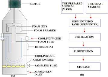 study of vinegar fermentation A study of the vinegar fermentation1 march 18, 2013-----1 a scientific paper submitted in partial fulfillment of the requirements in hnf 12 laboratory, 2nd sem, 2012-2013.